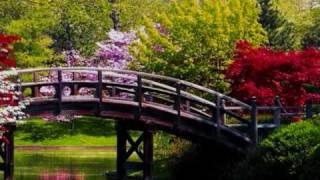 TCHAIKOVSKY - SERENATA PARA CUERDA -  opus 48  (2º movimiento,  tempo di vals)