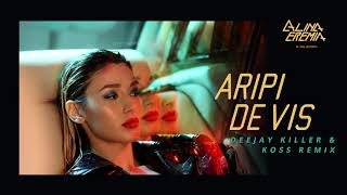Descarca Alina Eremia - Aripi De Vis (Deejay Killer & Koss Remix)
