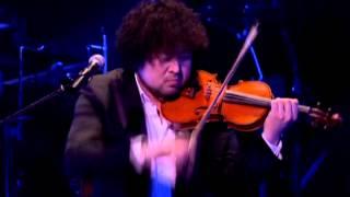 Taro Hakase, Hakase,Japanese violinist, Japanese musician violinist...