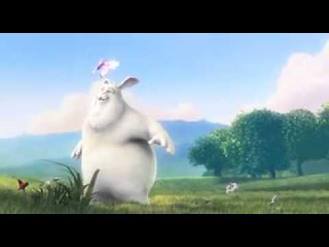 Download Funny rubbit's 10 sec video