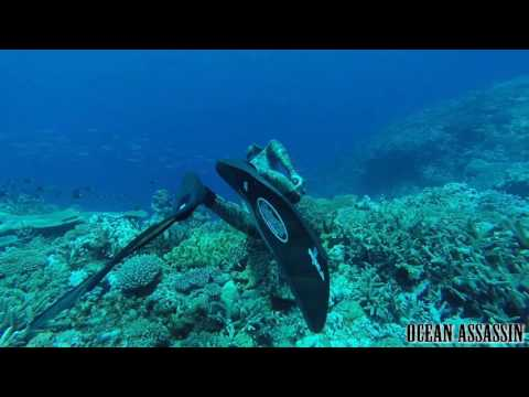 OceanAssassin Tonga-Ha'Apai Spearfishing ep01