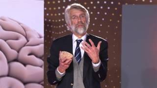 Waarom vernietigt vanillevla onze hersenen? Prof. dr. Erik Scherder (4/5)