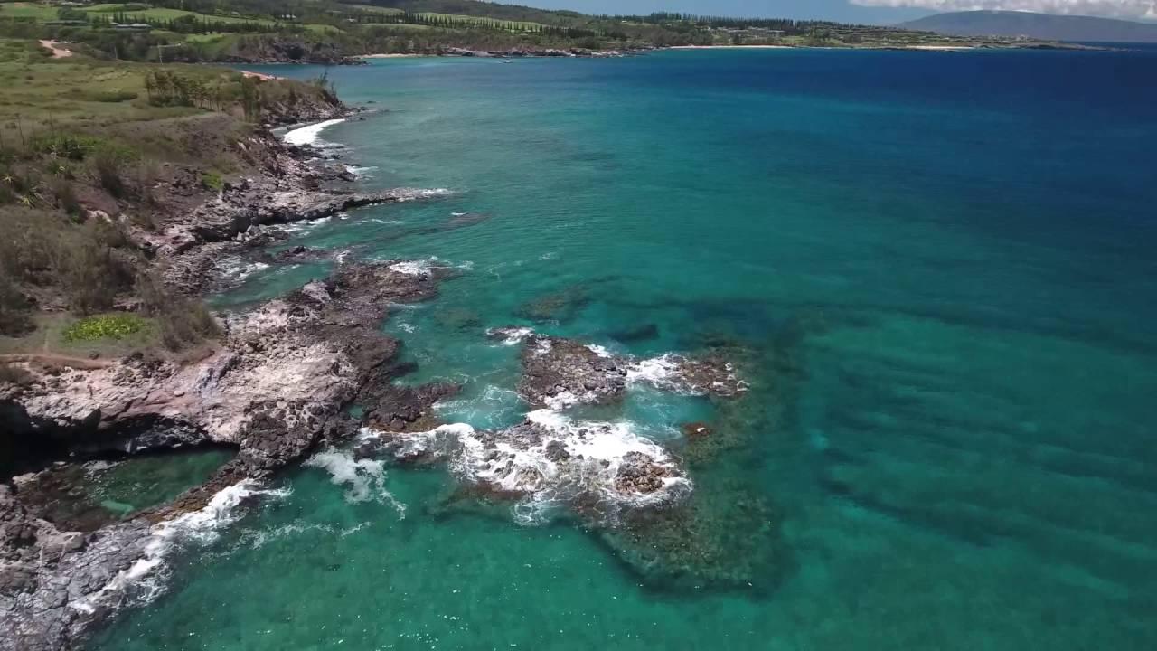 Maui, Honolua Bay, Slaughterhouse Beach. Honu sighted! - YouTube