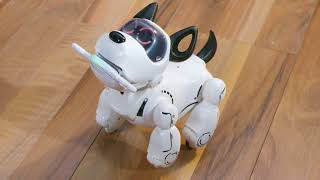 Tutoriel Robot PUPBO Français