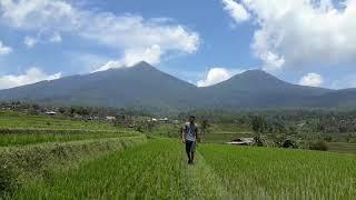 vn-0kv85so_enl Vans Bali
