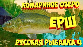 русская рыбалка 4 Ёрш озеро Комариное рр4 фарм Алексей Майоров russian fishing 4
