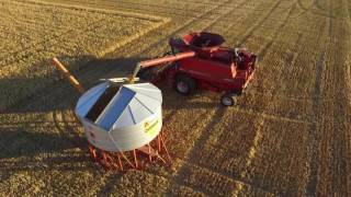 harvesting oats australia case ih 2388