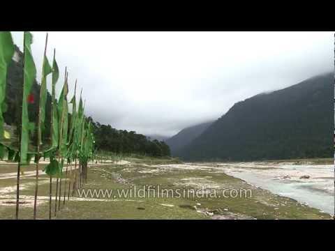 Yumthang river, Sikkim
