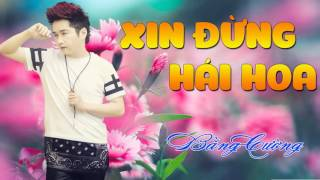 Xin Đừng Hái Hoa - Bằng Cường [Official Audio]