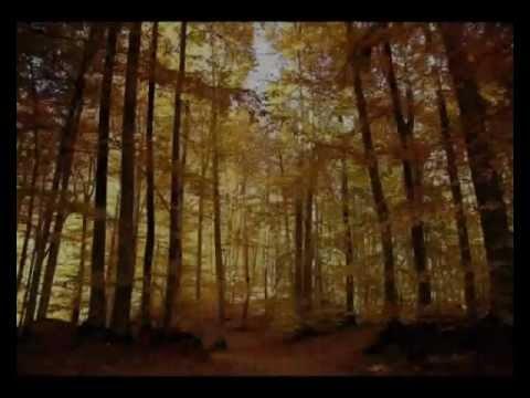 Ceyhun Yılmaz - Esmer (Ümit Yaşar Oğuzcan) Müzik: Baha