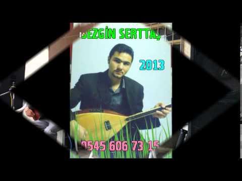 Sezgin Serttaş    neye yarar  2014demo album