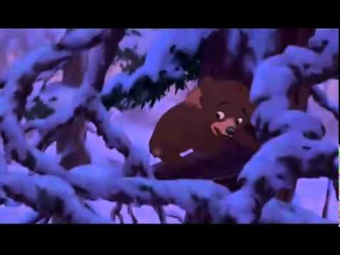 Bären Brüder - Kein weg zurück