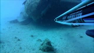 Ψαροντούφεκο - Spearfishing Σφυρίδες DeepCarbon