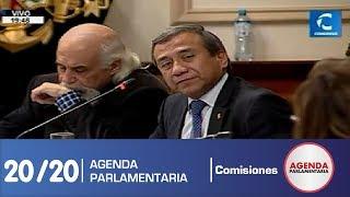 Sesión Comisión de Constitución 20/20 (17/07/19)
