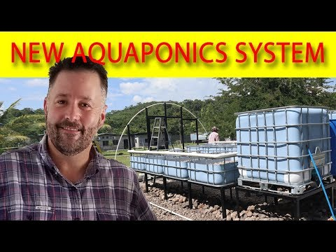 🙂 Aquaponics System Build – BEST Time Lapse Video! 🙂
