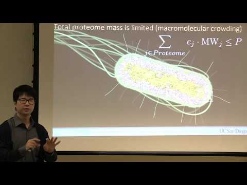 Bioengineering 212: Guest Lecture by Laurence Yang