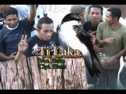 Lagu Reggae Maumere Flores NTT Ti Laka  Babo
