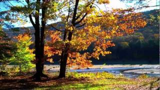 Allegheny National Forest - Autumn 2011