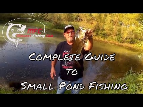 Complete Guide To Small Pond Fishing Or How To Catch Big Bass In Ponds.