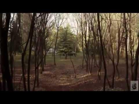 Wrong Turn 5 Bloodlines Trailer German Hd