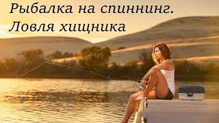 Рыбалка на спиннинг. Ловля хищника. Голавль, язь. Красивое видео