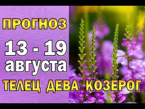Таро прогноз (гороскоп) с 13 по 19 августа ТЕЛЕЦ, ДЕВА, КОЗЕРОГ