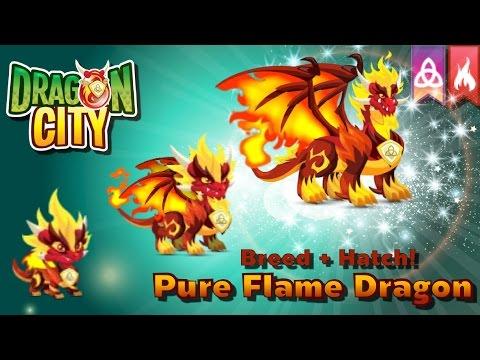 [Dragon City] ผสม + ฟักไข่มังกรเพลิงที่แท้จริง Breed + Hatch Pure Flame Dragon   amSiNE