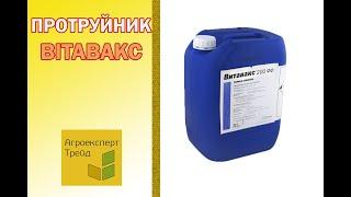 Протравитель Витавакс 🌱, описание препарата 🌱