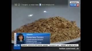 Вести-Хабаровск. Золотые самородки под кроватью