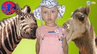 Ярослава и Кукла Штеффи отправляются в Зоопарк Анталии. Кормим Животных - Видео для детей Часть 1