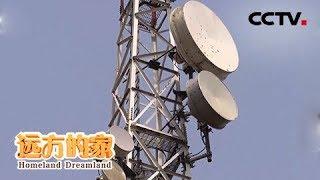 《远方的家》 20190604 一带一路(502) 尼日利亚 信息改变生活| CCTV中文国际