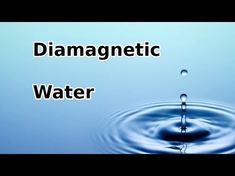 Diamagnetism of Water