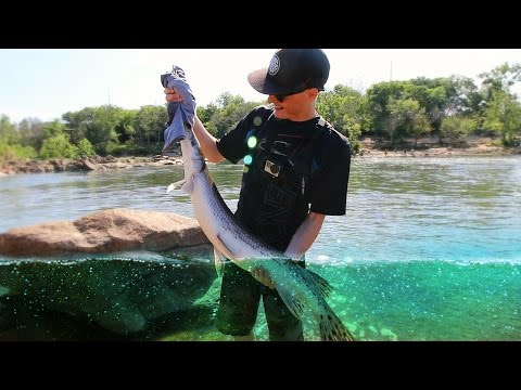 Swimbait Fishing for Striped Bass with FishingTheMidwest!  - Vlog (Bass Fishing) Day 1 | DALLMYD