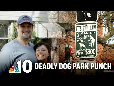 Fight Over Dog Leash Ends With Deadly Punch In South Philly Park