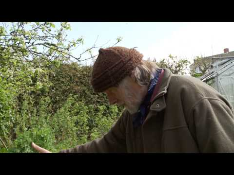 Permaculture Gardening - Spring time with Patrick Whitefield