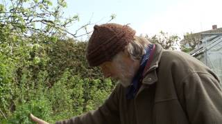 Permaculture Gardening - Spring time with Patrick Whitefield thumbnail