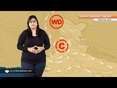 Weather Forecast for Feb 19: Snow in Kashmir, Himachal, warm weather in Mumbai, Delhi
