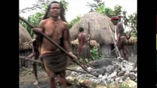 Repeat youtube video Papua