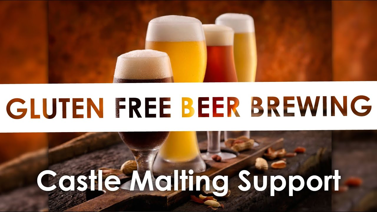Get all the answers on Gluten-free Brewing
