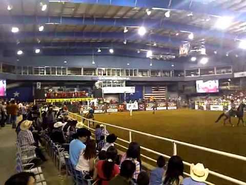 Toros Que Saben Bricar2 Rodeo En Dallas Texas Youtube