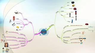 Mindmap- elements around us- طريقه سهله لمذاكره ساينس رابعه لدرس