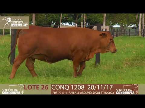 LOTE 26 CONQ 1208