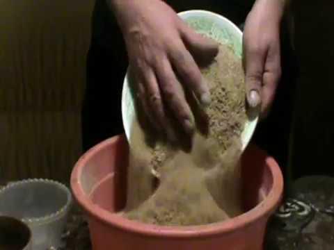 зимняя прикормка для плотвы своими руками рецепт