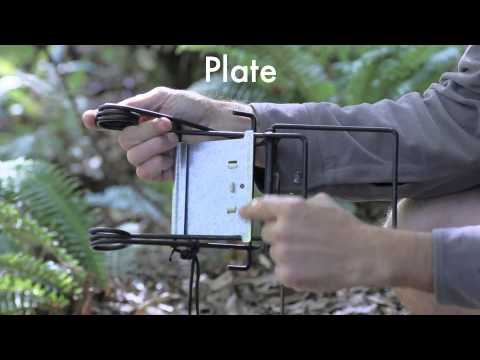 How to install a sentinal possum trap for conservation