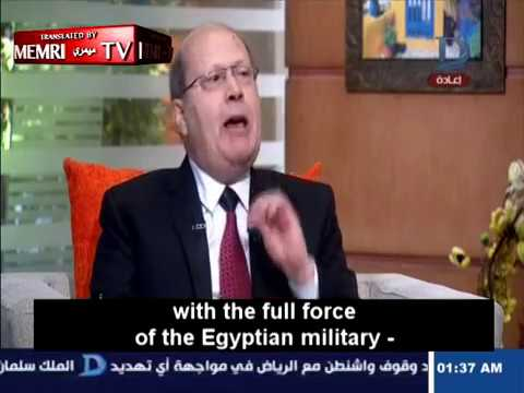Egyptian Political Activist: Egypt Deceived Israel, Used Terror as Pretext to Send Forces to Sinai