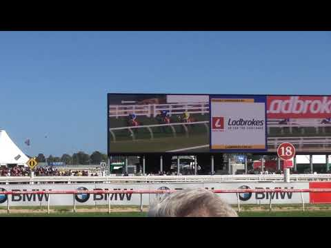 WINX  Caulfield Stakes 8/10/2016 12 in a row ウィンクス コーフィールドステークス