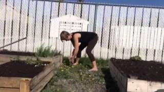 Whole Body Gardening