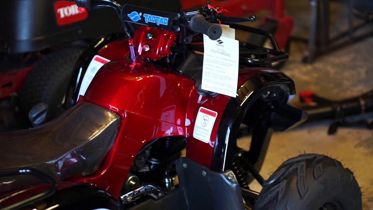 2015 TaoTao 125D Part 1 - Have the Chinese Stepped Up Their Game ...