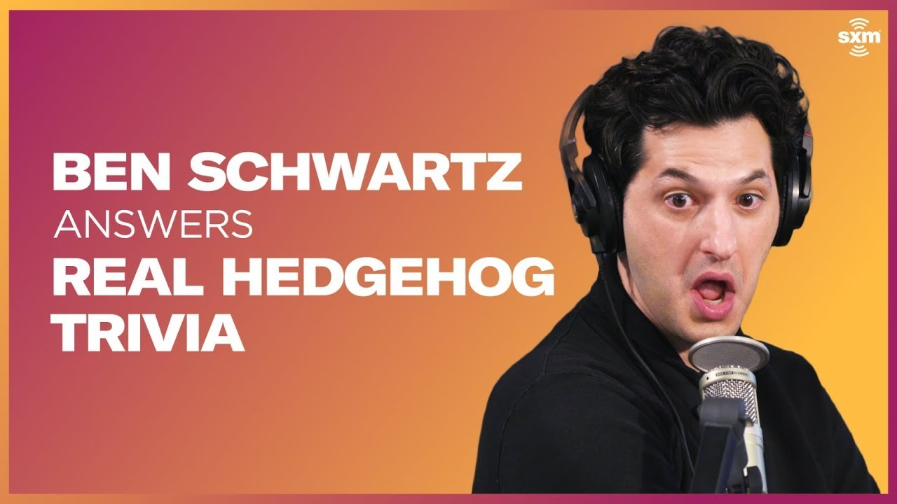 How Much Does Ben Schwartz Really Know About Hedgehogs?