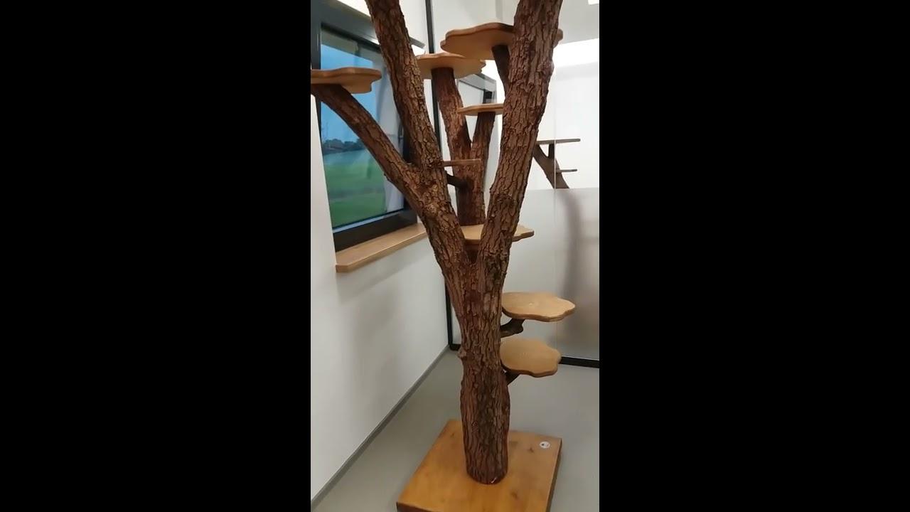 gigantischer natur-kratzbaum - youtube